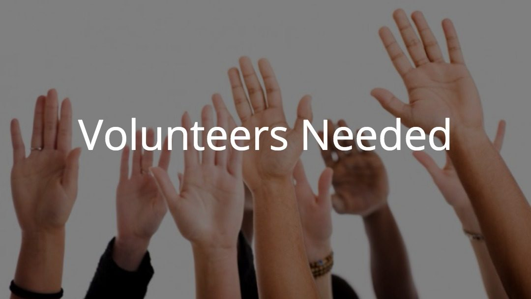 Looking to Volunteer Somewhere?