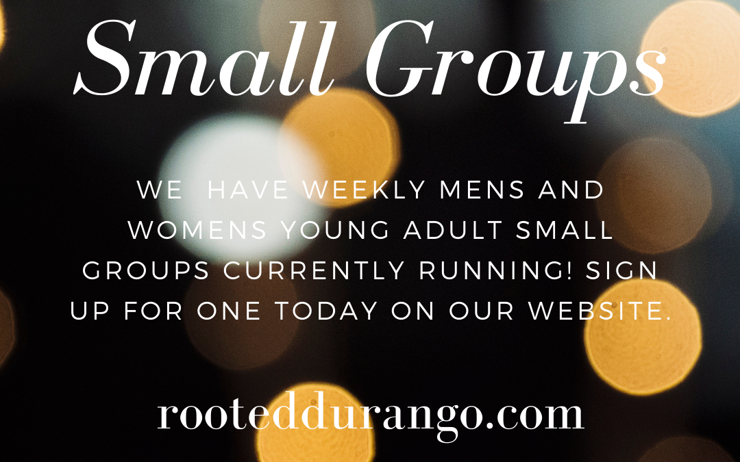Young Adult Small Groups