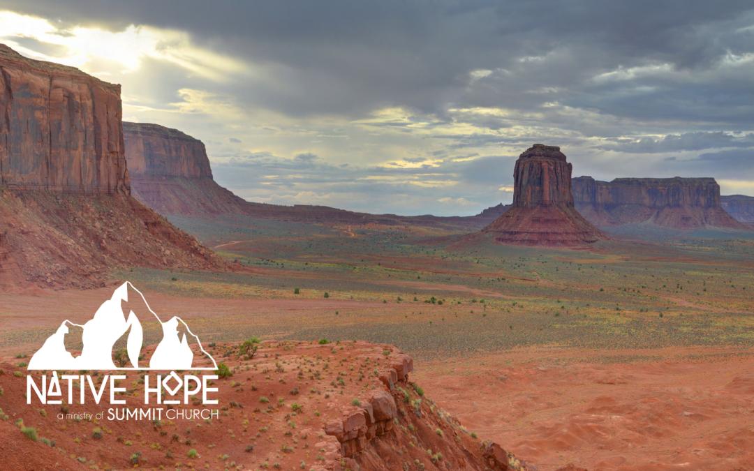 Native Hope Food Drive